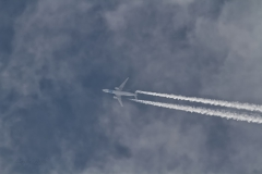 20200307_EgyptairA330_SUGDV_01