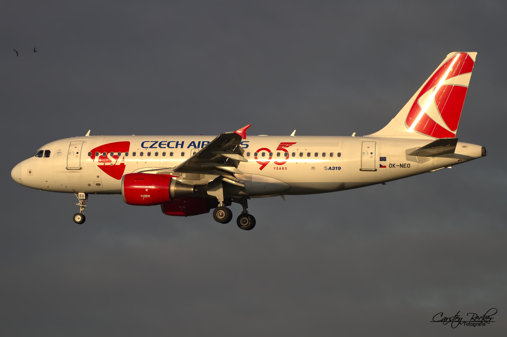 Czech Airlines A319 OK-NEO 95Years